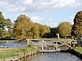 Heron Lake in Bushy Park - panoramio.jpg