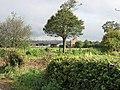Highfield House - geograph.org.uk - 265818.jpg