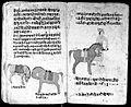 Hindi Manuscript 191, fols 68 verso 69 recto Wellcome L0024261.jpg