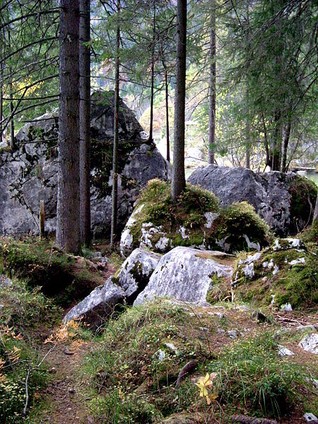 File:Hintersee Zauberwald 08.JPG