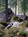 Hintersee Zauberwald 08.JPG