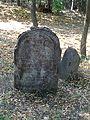 Hoješín C. Židovský hřbitov.jpg