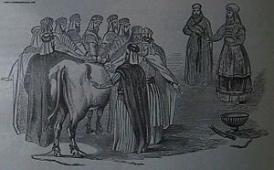 The National Sin Offering, illustration from t...