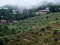 Hpa-An, Myanmar (Burma) - panoramio (206).jpg