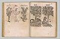 I) Herbarum, Arborum, Fructium, Frumentorum, c. 1540 ... II) De Speciali quarundam plantarum, Frankfurt- Egenolff 1552 MET DP327887.jpg