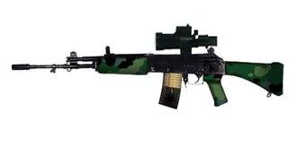 Armament Research and Development Establishment - INSAS Assault rifle