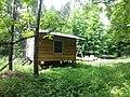 Im Wald bei Kaltohmfeld - panoramio.jpg