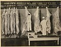 Inspection of Carcasses - NARA - 5714085 (page 2).jpg