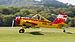 Interflug PZL-106AR 2M Kruk D-FOAB OTT 2013 08.jpg