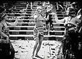 Intolerance (1916) - Dancers 5.jpg