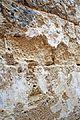 Israel-04807 - Old Plaster (32824001884).jpg