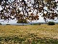 Itapaci - State of Goiás, Brazil - panoramio.jpg
