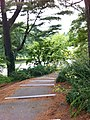Jamaica Hills - Pond, Boston, MA, USA - panoramio (32).jpg