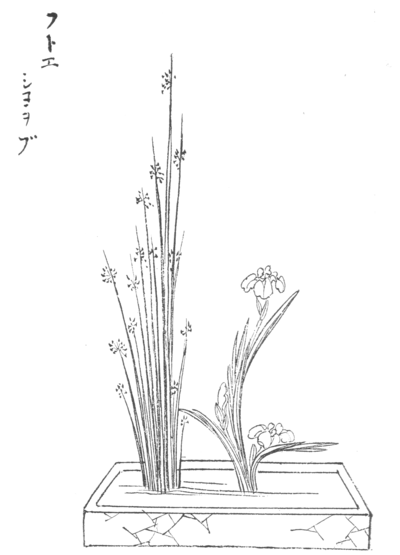 Japanese Flower Arrangement Chapter 9 Wikisource The Free Online Library