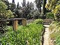 Jardin Serre de la Madone - DSC04073.JPG