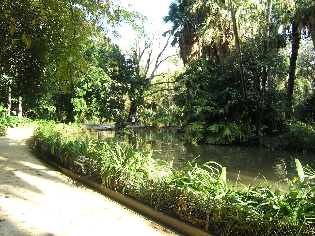 File jardin d 39 essais alger 4 jpg wikimedia commons for Jardin d essai alger