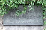 Jena Gedenktafel Todesmarsch Friedenskirche.jpg
