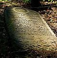 Jewish cemetery Otwock 10760704.jpg