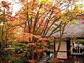 Jyojakkouji,Sagano,Kyoto - panoramio.jpg