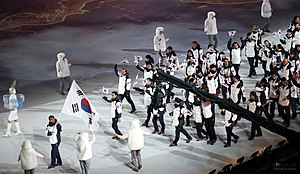 South Korea at the 2014 Winter Olympics - The South Korean delegation on parade at the opening ceremony