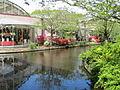 Keukenhof Garden (19).JPG