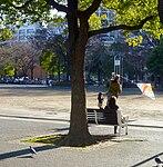 Kite in the park in Yokohama-2012-01-03.jpg