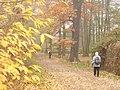 Kladow - Imchenallee - geo.hlipp.de - 30467.jpg