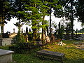 Kościelec - cmentarz, nagrobki z II poł. XIX i pocz XX w. (26.VI.2006).JPG