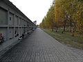 Komunalny Cmentarz Południowy w Warszawie 2011 (46).JPG