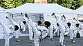 Korea Insadon Taekwondo 08 (7877456672).jpg