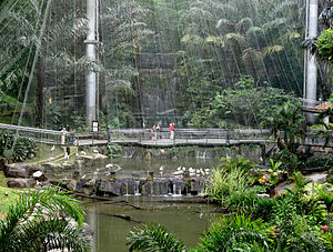 Kuala Lumpur Bird Park - Internal view of the bird park
