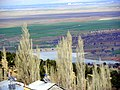Kurukavak (arkada dorla göleti) - panoramio.jpg