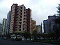 La Paz avenida Saavedra.jpg