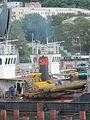 Laika ac Vladivostok (6451215591).jpg
