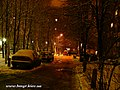 Laitoshinskiy str. at night - panoramio.jpg