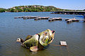 LakeAustin-April2008-d.JPG