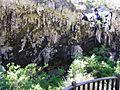 Lake Cave @ Margaret River (4449805761).jpg
