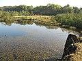 Lake in (former) Walltown Quarry (2) - geograph.org.uk - 578233.jpg