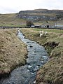 Lambs cavort by the beck - geograph.org.uk - 1776777.jpg