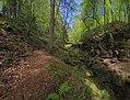 Landschaftsschutzgebiet Nagoldtal (8 Teilgebiete), Kennung 2.35.037, Lützengraben, Wildberg 03.jpg