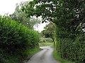 Lane Near Cog Hall - geograph.org.uk - 1460787.jpg