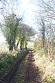 Lane in Coddington in Late November - geograph.org.uk - 287635.jpg