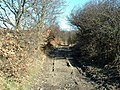 Lane near Midgely - geograph.org.uk - 132347.jpg