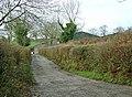 Lane to Trehenry - geograph.org.uk - 650352.jpg