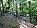 Langenfeld Schwanenmühle 0025.jpg