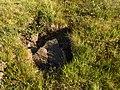 Lapland - Urho Kekkonen National Park - 20180728171720.jpg