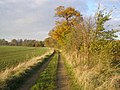 Late afternoon sunshine near Diddington - geograph.org.uk - 619608.jpg