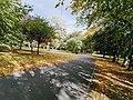 Leazes Park.jpg