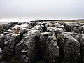 Limestone pavement at Sulber - geograph.org.uk - 283252.jpg