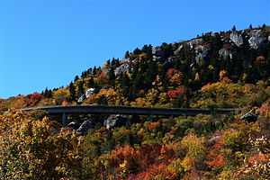 Linn Cove Viaduct - Linn Cove Viaduct